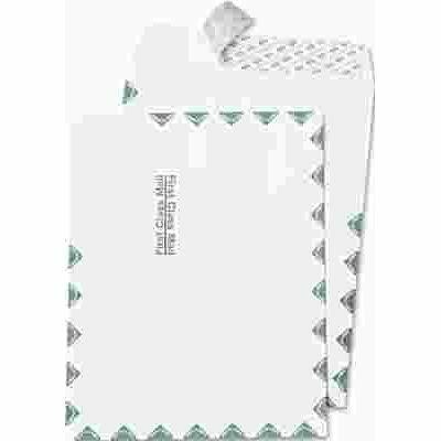 QUALITY PARK PRODUCTS REDI STRIP CATALOG ENVELOPE, FIRST CLASS, 10 X 13, WHITE, 100/BOX