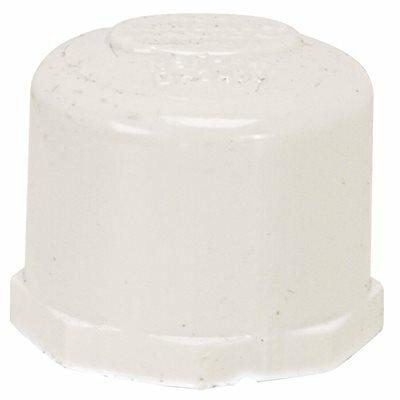PROPLUS PVC THREADED PIPE CAP, 1/2 IN.