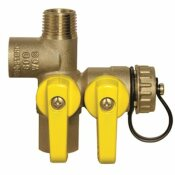 WEBSTONE EXPANSION TANK SERVICE VALVE, 1/2 IN.