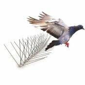 BIRD-X 50 FT. STAINLESS STEEL BIRD SPIKES PIGEONS STARLING BLACKBIRDS SEAGULLS 6 IN. COVERAGE