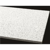 ARMSTRONG CEILING PANEL FISSURED SQUARE LAY-IN 24 X 48 X 5/8 IN. (12-CASE)
